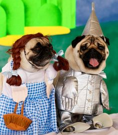 ( tin pug) : Hey Wendy...are u free Friday ,( Wendy) : get a breathe mint frank