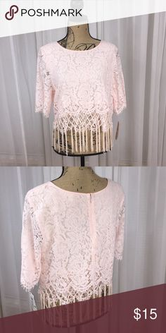 NWT GB delicate pink crop top Fringe hang detail. Lace design overlay. Lined crop top. Perfect for summer and vacations ☀️🛍 Giani Bernini Tops Crop Tops