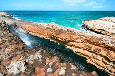 Devil's Bridge, Antigua. Cross the street from pineapple beach club.  Samuel was the only brave one to walk across.