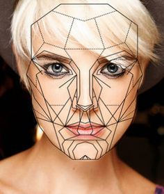 anatomical facial features planes - Google Search
