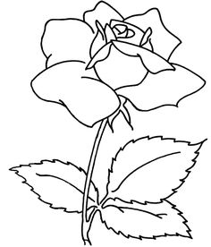 Spray Flower Coloring Sheets For Adults