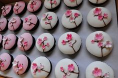 cherry blossom cupcakes by @joleneferrer