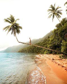 Labengki Island is a beautiful tropical island in Southeast Sulawesi, #Indonesia Photo by: IG @baratdaya_