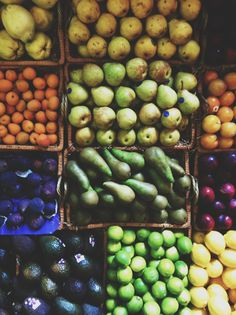 fruit from fallon and byrne in ireland. photo by jenn elliott blake | scout blog.