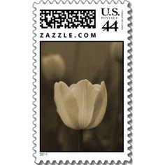 $18.95 http://www.zazzle.com/single_tulip_sepia_tone_postage_stamps_gift_ideas-172047092436518126?rf=238222133794334761