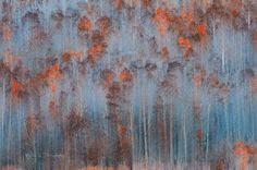 Late Autumn - The scattered bright red, golden and orange aspen leaves along the mountain cliff caught my eyes, the leaves quaking in the fall breezes, looked like a oil painting.