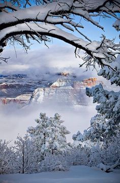 the Grand Canyon in the winter is beautiful and not as crowded ... stayed at the El Tovar