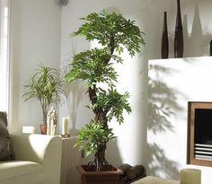 Ventajas de decorar la casa con plantas artificiales - http://www.decoora.com/decoracion-del-hogar-plantas-artificiales/