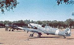 Bf 109 G4 150°Gruppo