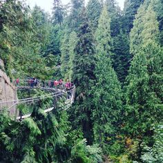 Who else has dared the Vancouver Cliff Edge Walk?