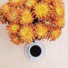 Assim começa bom ☕️✨❤️ buenos díaaas!!  #florigrafias #maisflorporfavor #apaixonadosporcafé #café #cafécominstagram #lovecoffee #cafézin #tonoadorofarm #onthetable #communityfirst
