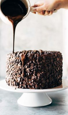 Blackout Chocolate Cake | the best chocolate cake with a chocolate chip exterior @pinchofyum