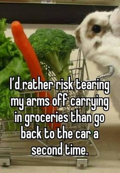 I'd rather risk tearing my arms off carrying in groceries than go back to the car a second time.