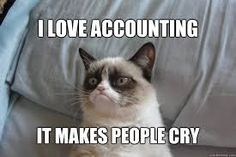 I love accounting. It makes people cry. Oh good one, Grumpy Cat... lol