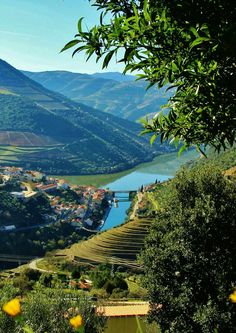 Pinhão Places In Portugal, Visit Portugal, Best Countries To Visit, Cool Countries, Douro Portugal, Portuguese Culture, Lisbon, Places To See, Countryside