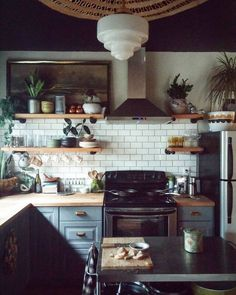 kitchen with house plants