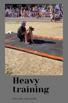 Training Your Dog, Track, Runway, Truck, Running, Track And Field