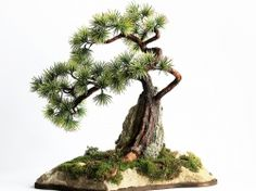Bonsai Zokei Sekijoju Sosna - sztuczne drzewko bonsai
