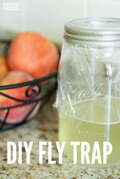 Easy Fly Trap - House Buying - Factors affect Home buying process - If you are tired of buying flying traps see how you can make your own with items you probably already have at your house! House Fly Traps, Homemade Fly Traps, Insecticide, Bottle Cutting, Fruit Flies, Garden Guide, Pest Control, Cleaning Hacks, Rv Hacks