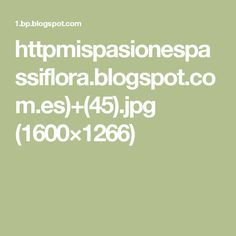 httpmispasionespassiflora.blogspot.com.es)+(45).jpg (1600×1266)