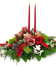 Christmas Orchid Centerpiece: Stunning orchids add a magnificent tropical touch to the traditional holiday centerpiece. Orchid Centerpieces, Holiday Centerpieces, Centrepieces, Table Decorations, Christmas Home, Christmas Trees, Blossom Flower, Holiday Traditions, Merry And Bright