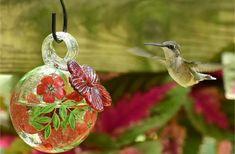 Hummingbird Food, Real Estate Articles, Birds And The Bees, Good Environment, Backyard, Humming Bird Feeders, Simple Rules, Proper Nutrition, Hummingbirds