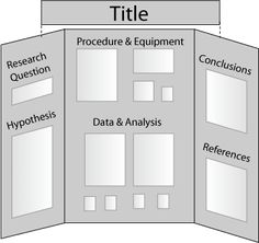 school trifold board project | Sample Tri-Fold