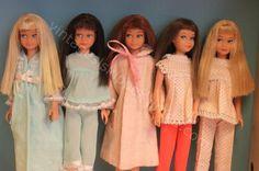 A guide to vintage Skipper dolls - Skipper Website Play Barbie, Barbie Skipper, Barbie Life, Barbie World, Barbie Dress, Barbie Clothes, Barbie Stuff, Barbie Sisters, Barbie Family