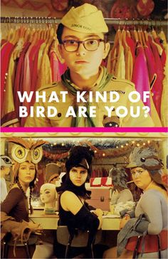 like the girls bird outfits