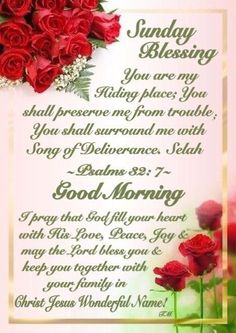 Sunday blessings happy sunday morning, happy sunday quotes, sunday kind of love, morning Blessed Sunday Morning, Blessed Sunday Quotes, Sunday Prayer, Sunday Morning Quotes, Sunday Quotes Funny, Good Night Prayer, Good Morning Inspirational Quotes, Morning Blessings, Morning Prayers
