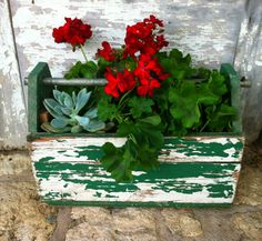 my other love is pelargoiums and this is wonderful - an old wooden toolbox planted with succulents and geraniums - colour and texture - gorgeous