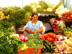 Food:  Ecuadorian food consists of mostly fresh fruits and vegetables.