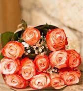 Dozen Coral Roses