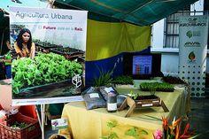 El pasado 26 de octubre la Universidad Bolivariana de Venezuela (UBV) Eje Geopolítico José Félix Ribas, a través del Programa de Formación de Grado (PFG) en Agroecología, participó en la instalación del II Congreso Venezolano de Agroecología, en el Instituto de Altos Estudios Dr. Arnoldo Gabaldón (IAES), en Maracay.