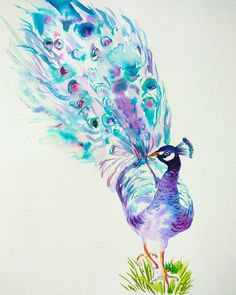 Check out this item in my Etsy shop https://www.etsy.com/listing/491293750/peacock-original-watercolor-painting