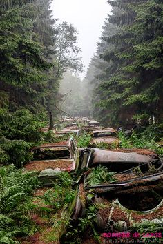 Traffic Jam in Belgium forest. The Chatillon Car Graveyard was a haunting sight with lines of abandoned cars sitting in an overgrown forest. The real story behind these abandoned cars remain a complete mystery. Abandoned Buildings, Abandoned Houses, Abandoned Places, Abandoned Belgium, Abandoned Vehicles, Places To See, Lost Places, Beautiful Places, Scenery