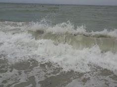 Surfing day at Treasure Island beach - News - Bubblews