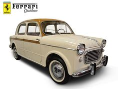 Fiat 1100d for sale