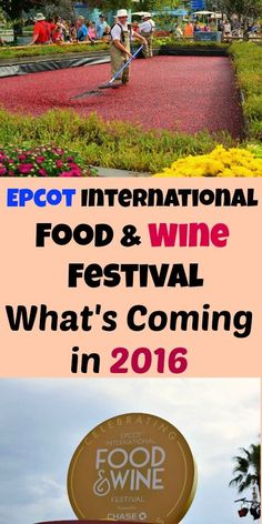 Here's the scoop on what you can expect at the 2016 International Epcot Food & Wine Festival including shows, events, concerts and, of course, the food and wine!