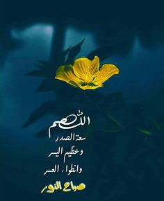 Islamic Phrases, Morning Wish, Relationship, Movies, Movie Posters, Collection, Films, Film Poster, Popcorn Posters