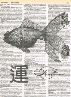 Asian Fortune Fish.good by studioflowerpower on Etsy