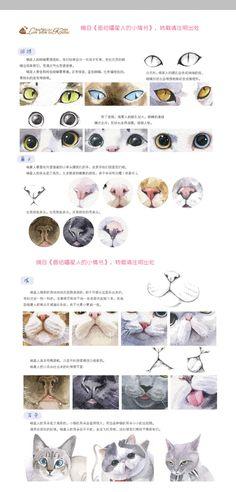 猫猫局部的画法:眼睛、鼻子、嘴、耳朵的画法。摘自《画给喵星人的小情书》,官纯 编著。