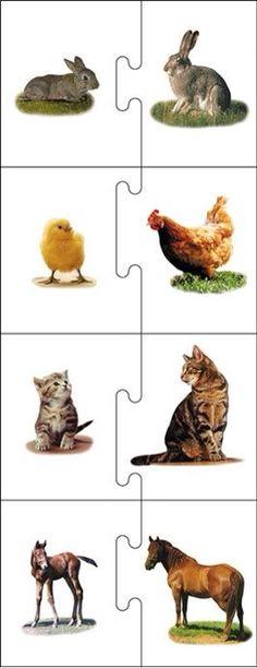 Dieren: Jong-ouder: Puzzel