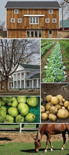 New Venue Spotlight: Cornman Farms - Summer 2014