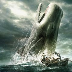 CACHALOTE: gigante dos mares.