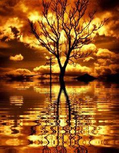 Bom dia Gente Boa!! Contemple este Lindo abençoado dia,que Deus criou,Agradeça a Deus por tudo.