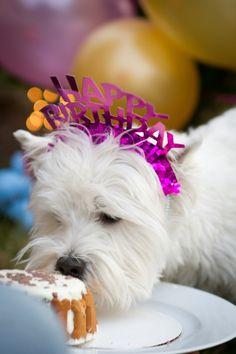 Sophie's 2nd Birthday!