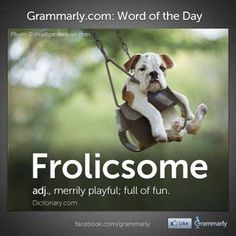 Frolicsome