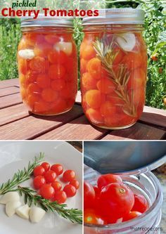 Rosemary and garlic flavored pickled cherry tomatoes. Recipe from Ball Blue Book Guide to Preserving.