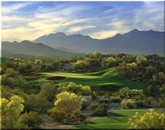 yes, the golf courses really do look like this!  Scottsdale AZ